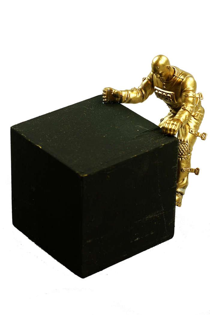 20120824 Gouden Voorwerpen 5862Pet