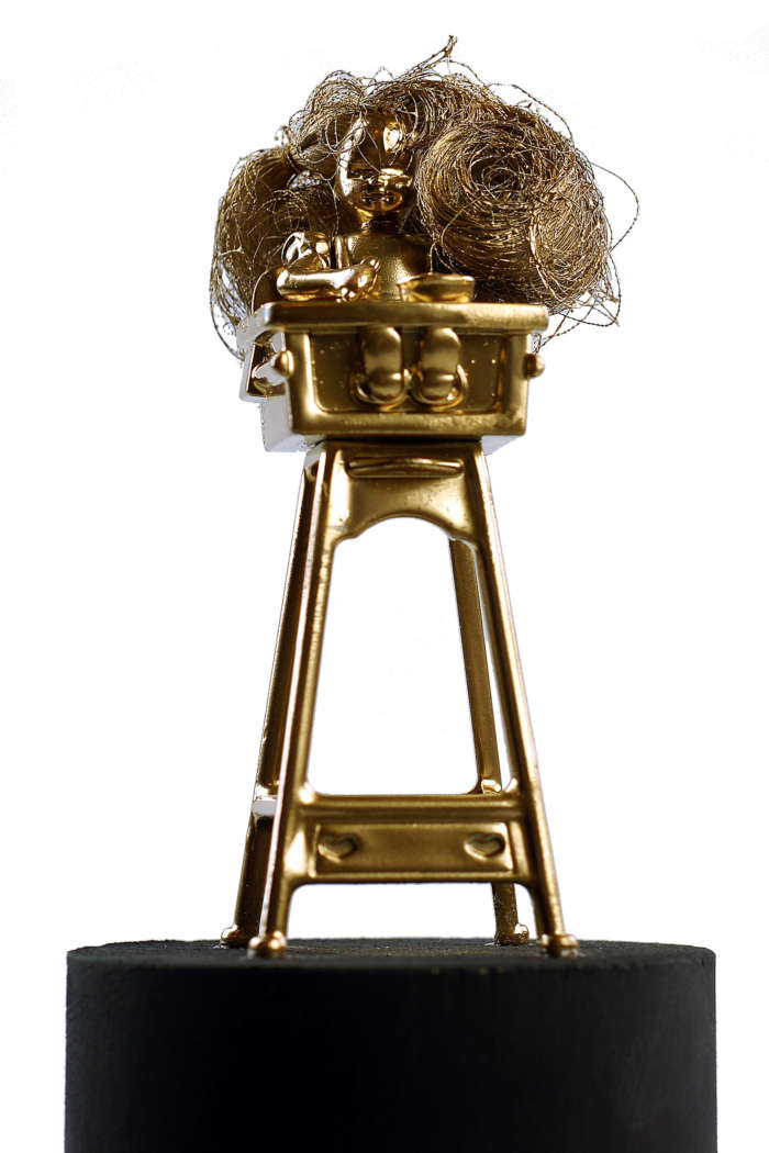 20120824 Gouden Voorwerpen 5981Pet