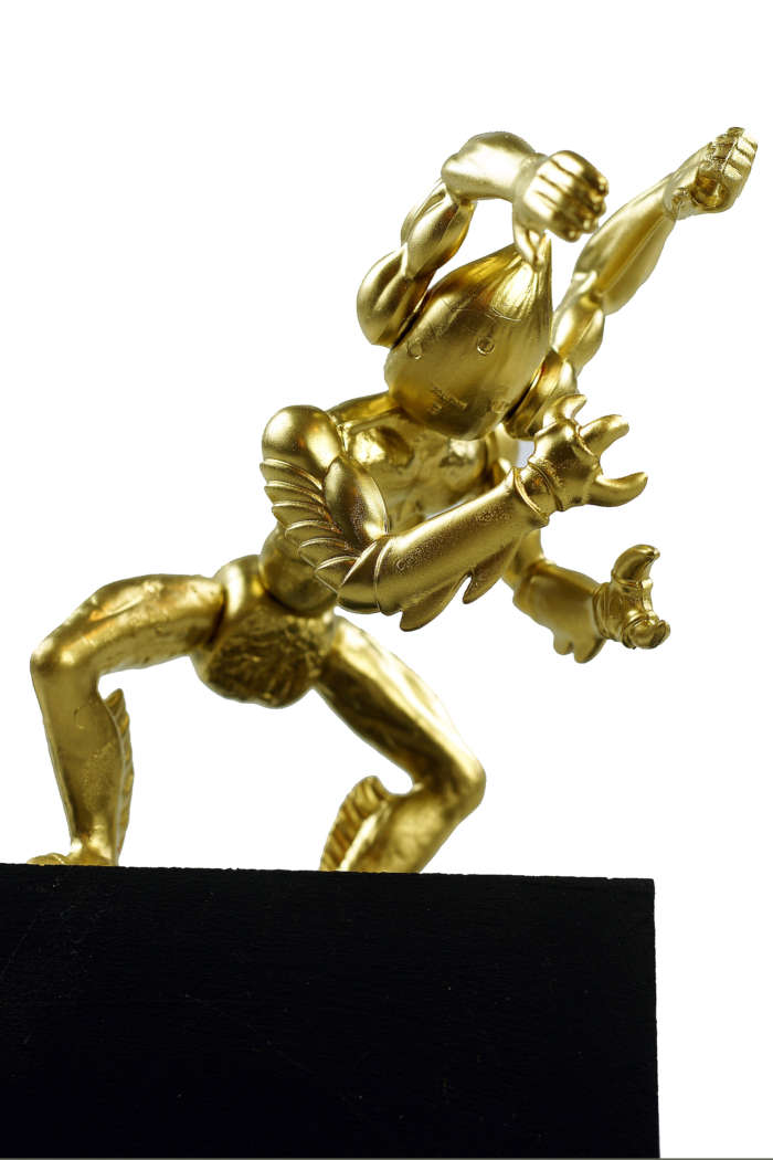 20120824 Gouden Voorwerpen 5985Pet