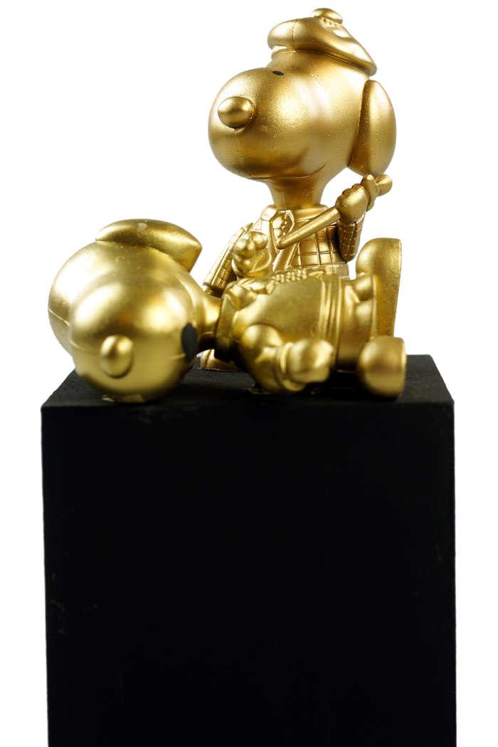 20120824 Gouden Voorwerpen 6033Pet