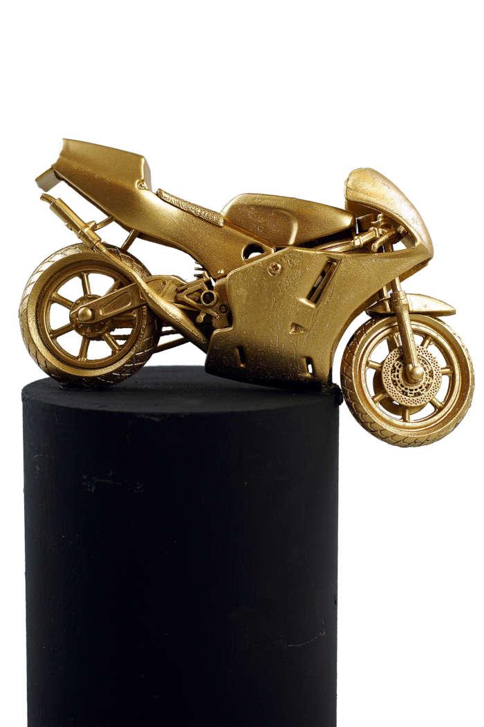 20120824 Gouden Voorwerpen 6034Pet